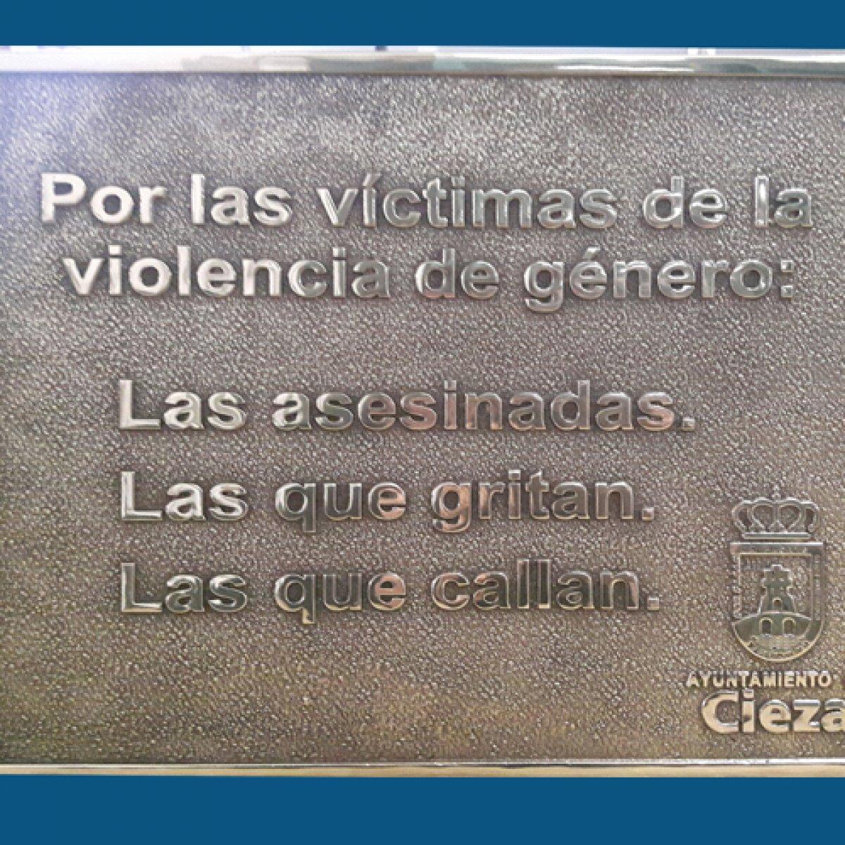 Placa Victima de Genero